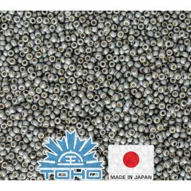 TOHO® Seed Beads PermaFinish - Frosted Galvanized Blue Slate TR-11-PF565F 11/0 (2.2 mm) 10 g.