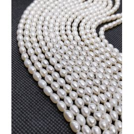 Natural Freshwater Pearls Class A 5.5-6x4.5-5 mm. ,1 strand
