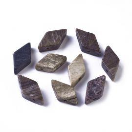 Natūralūs Petrified Wood karoliukai 17-22x9-11 mm 1 vnt
