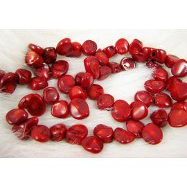 Natūralaus koralo karoliukų gija, raudonos spalvos, monetos formos, 9-15x8-12 mm
