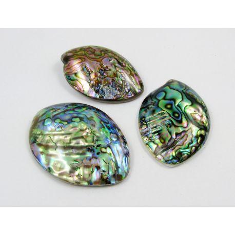 Abalone sinks cabochon, brownish green, size 52x39 mm