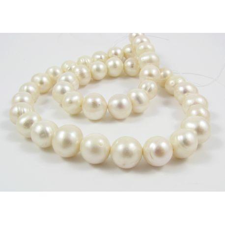 Saldūdens pērļu vītne 35 - 40 gab. Balta apaļa forma 10-11 mm