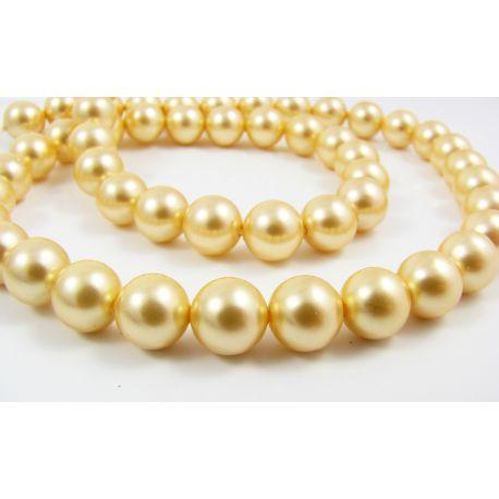 SHELL pērļu pērles no zelta krāsas apaļas formas 8 mm 10 gab.